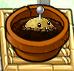 Smallpotato