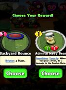 Choice between Backyard Bounce and Admiral Navy Bean