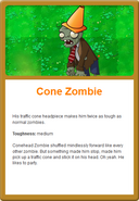 Cone Online