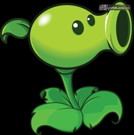 File:Pea shooter.jpg