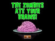 The Zombies Ate Your Brains