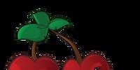 Cherry Bomb/Gallery