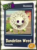 Dandelion Weed GW2