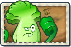 File:Bonk Choy New Wild West Seed Packet.png