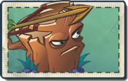Oakshooter Seed Packet