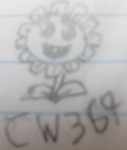 File:Marigold sketch.PNG