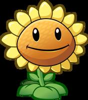 File:Plants vs zombies 2 sunflower by illustation16-d7gic8z.png