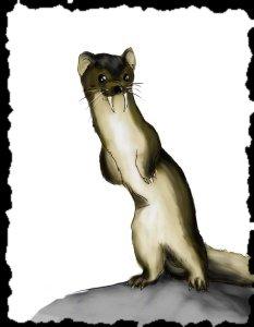 File:Sabertooth weasel.png