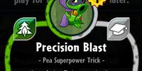 Precision Blast