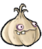 Garlic body1