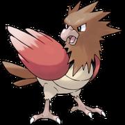 Pokemon Spearow