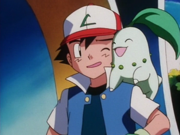Ash and Chikorita