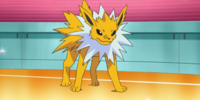 Volkner's Jolteon