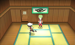 Petalburg City Gym ORAS