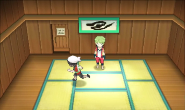 File:Petalburg City Gym ORAS.png