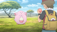 Red Chansey PO