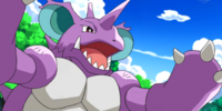 Pirate's Nidoking