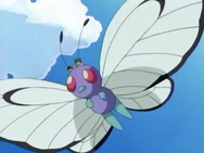 Xander Butterfree