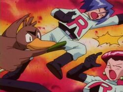 Sylvester's Farfetch'd Fury Attack