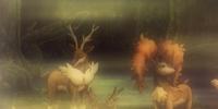 BW056: The Four Seasons of Sawsbuck!