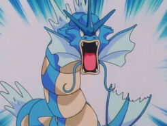 James' Gyarados