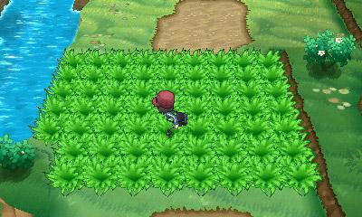 Tall Grass Pok 233 Mon Wiki Fandom Powered By Wikia