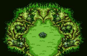 Transform Forest
