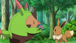 Who Is Squishy In Pokemon Xyz : Pokemon the Series: XYZ Pokemon Wiki Fandom powered by Wikia