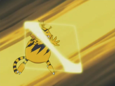 Macy Electabuzz Light Screen