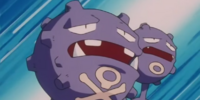 James' Weezing