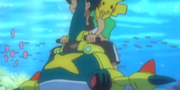Poké Ride's Sharpedo