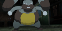 Diggersby (XY088)