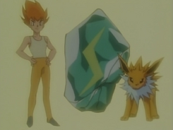 Eevee Brother Sparky