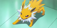 Red's Jolteon