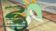 Mako Serperior Tackle