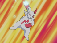 Nicholai Zangoose Crush Claw