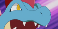 Trainer School's Feraligatr