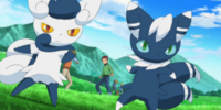 XY044: Showdown at the Shalour Gym!