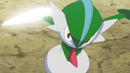 Woodward Gallade Slash
