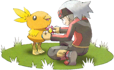File:Giving a Ribbon to Torchic.png