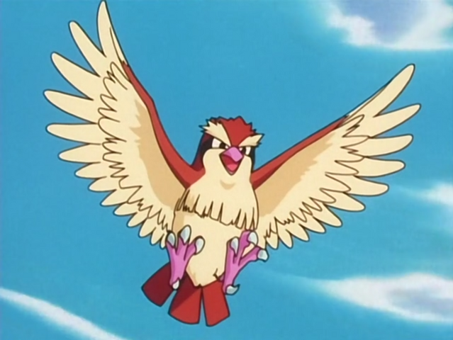 File:Casey Pidgey.png