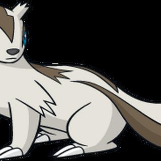 Linoone - The Pokémon Wiki
