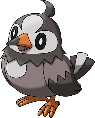 File:396Starly Pokemon Ranger Shadows of Almia.png
