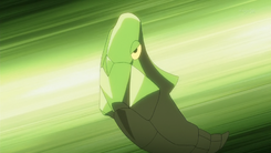Red Metapod PO