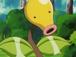 Zackie's Bellsprout