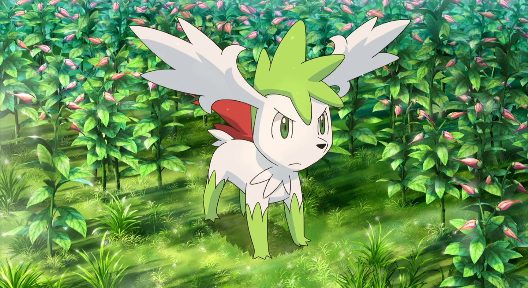 Sunny with a Chance of Shaymin | Miketendo64! The Place To Go For ...
