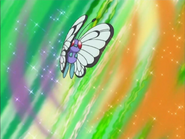 Jeremy's Butterfree Poison Powder