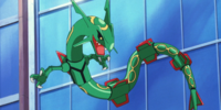 Rayquaza (MS007)