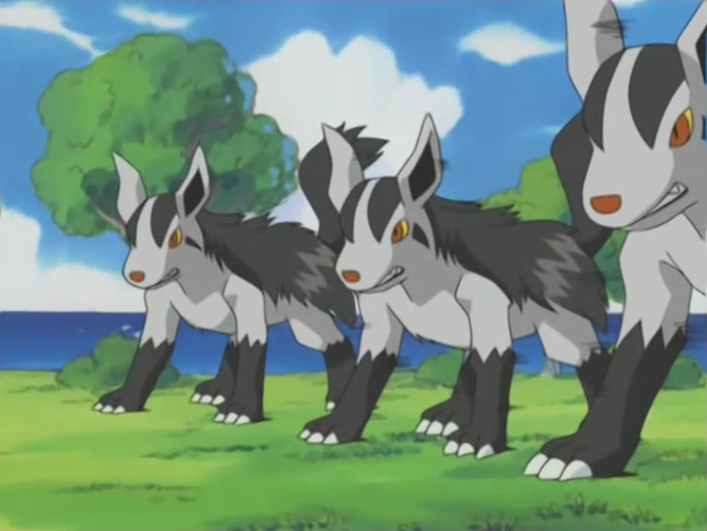 File:Tabitha Mightyena Double Team.png