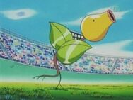 Jeanette's Bellsprout